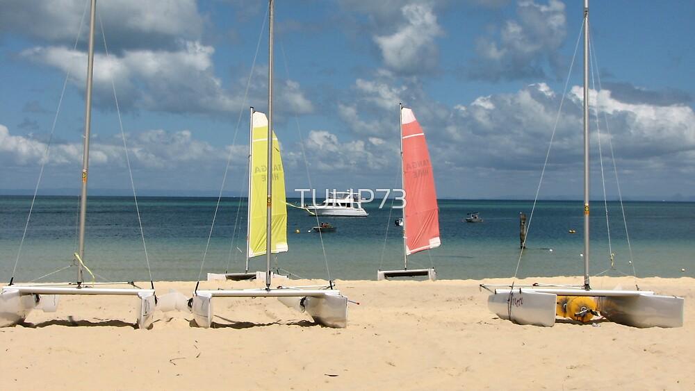BEACH by TULIP73