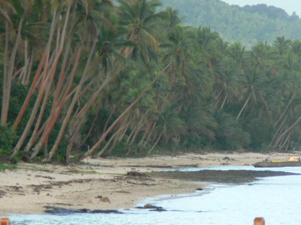A beach in paradise by Adeene