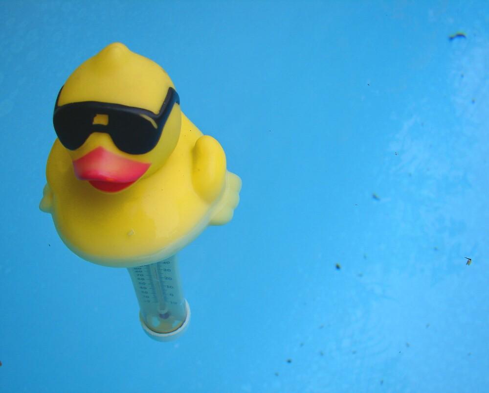 Quack by Susan Zohn