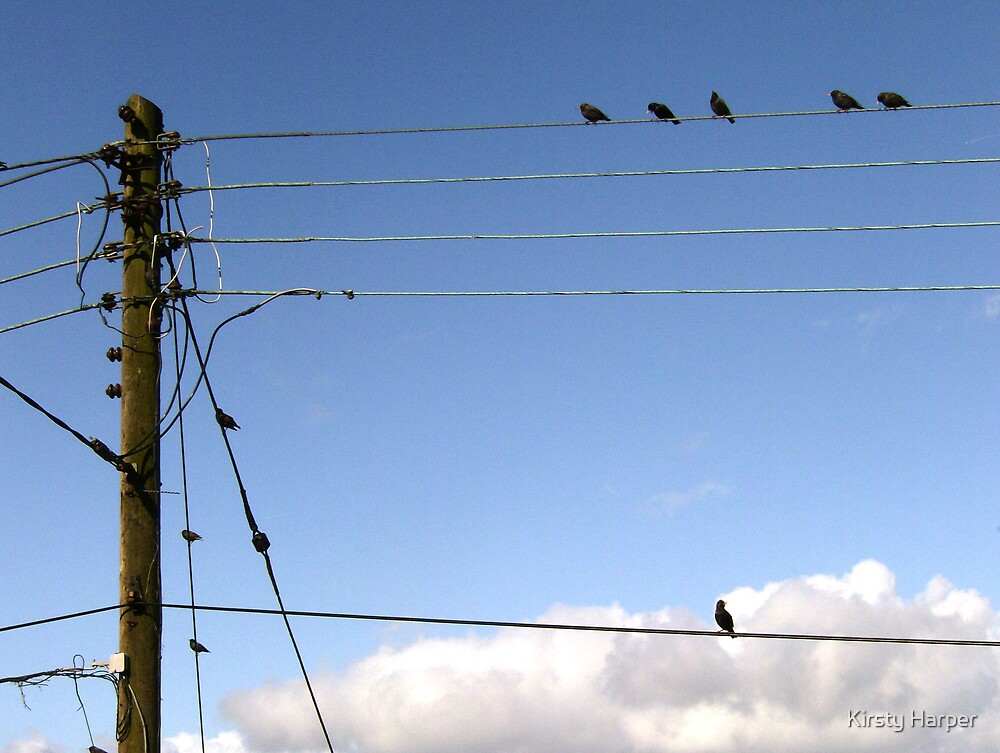 Balancing On A Wire (2) by Kirsty Harper