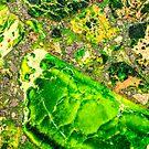Grünes Seediment-Achat-Muster von MMPhotographyUK