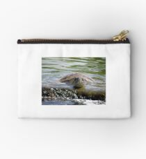 Turtle Landing Studio Pouch
