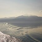 Farewell to Arran by Kat Simmons