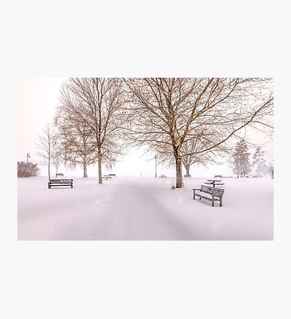 A Beautiful Winter's Morning  Photographic Print