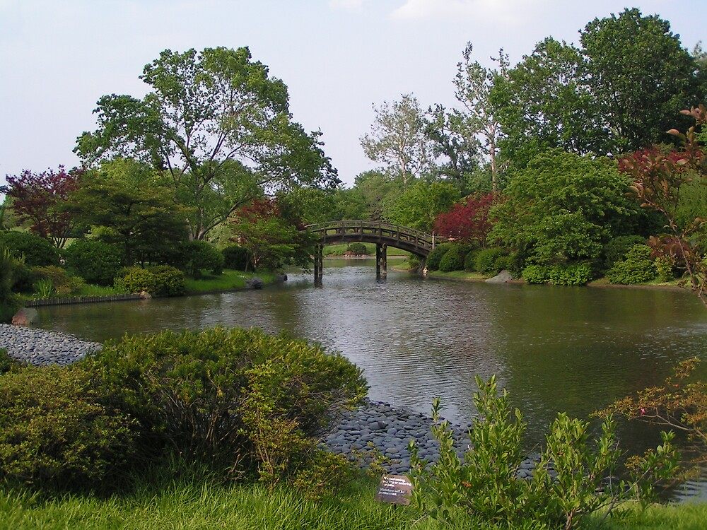 Bridge of Beauty by kraftyest