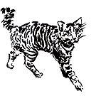 «Small tiger» de barcava
