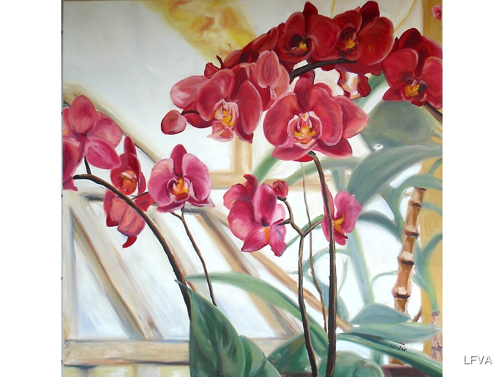 Red Orchid by LFVA