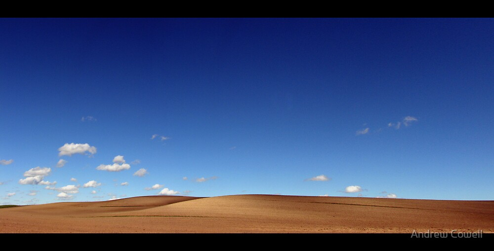 wide brown land by Andrew Cowell
