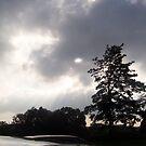 threatening sky by IB4A