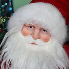 Santa Face by Cynthia48