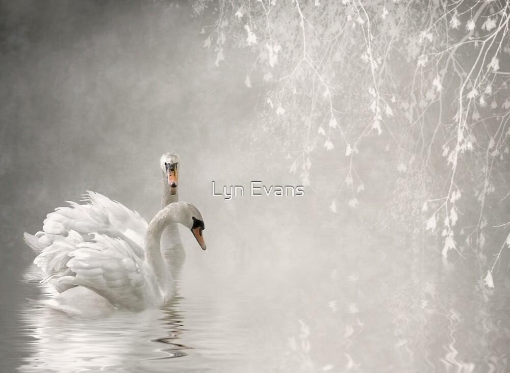 Secret rendezvous by Lyn Evans