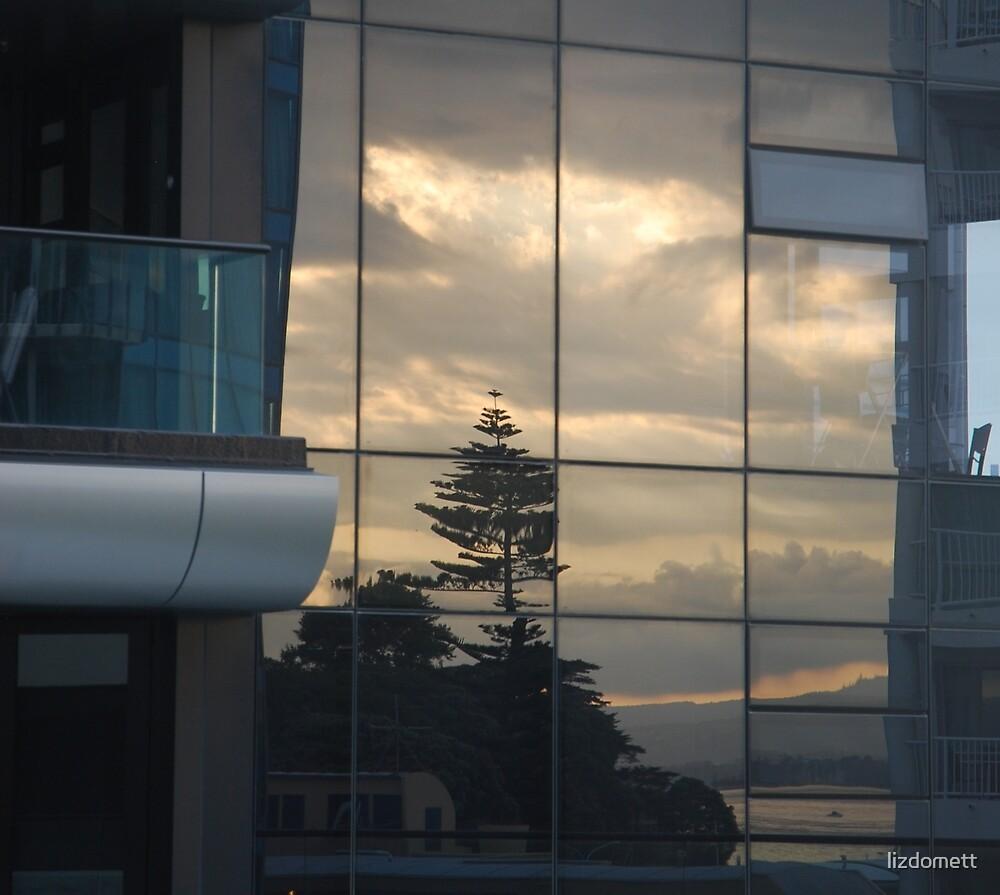 Norfolk in the window by lizdomett