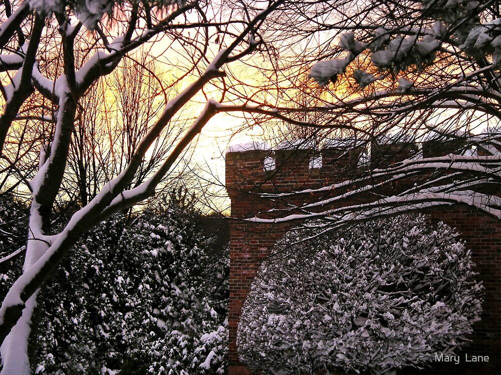 Winter Fantasy by Mary  Lane