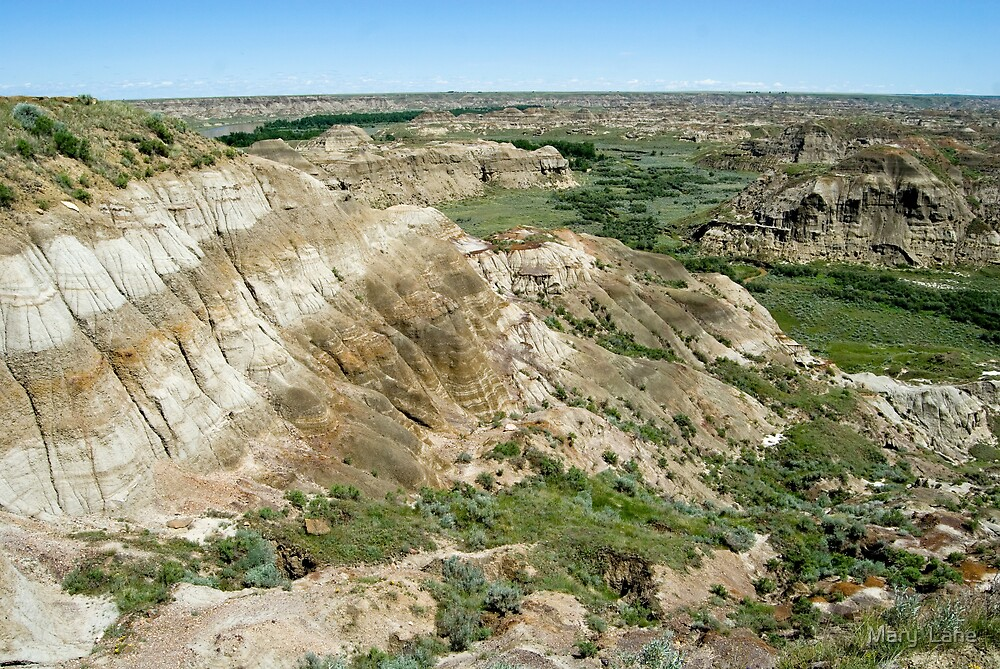 Alberta Badlands by Mary  Lane