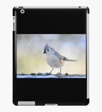Winter guest iPad Case/Skin
