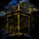Caged Detail from the Conservatory by mewalsh