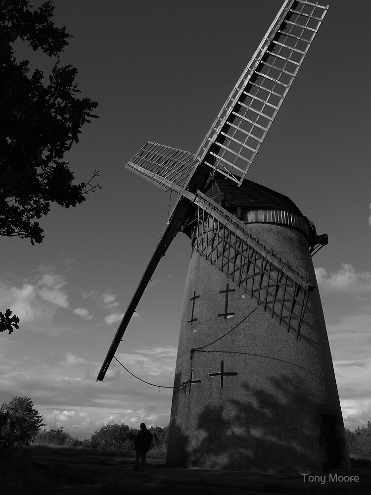 Bidston Windmill by Tony Moore