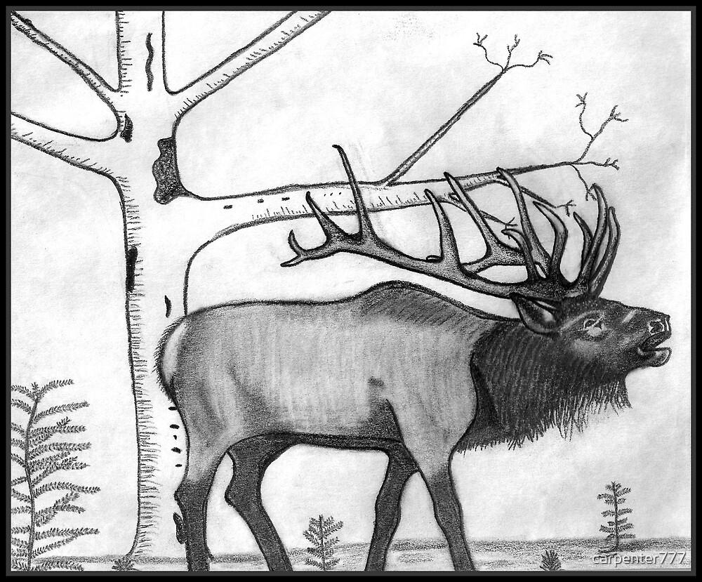 Elk by carpenter777