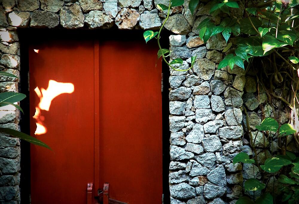 Red Door by ARPhotography