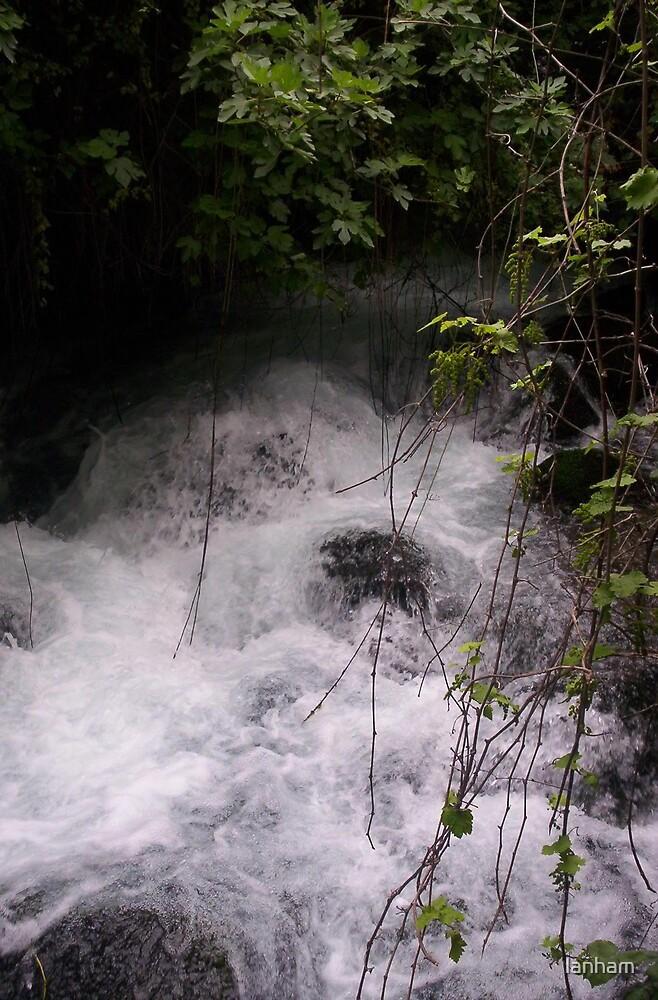 Quiet River by lanham