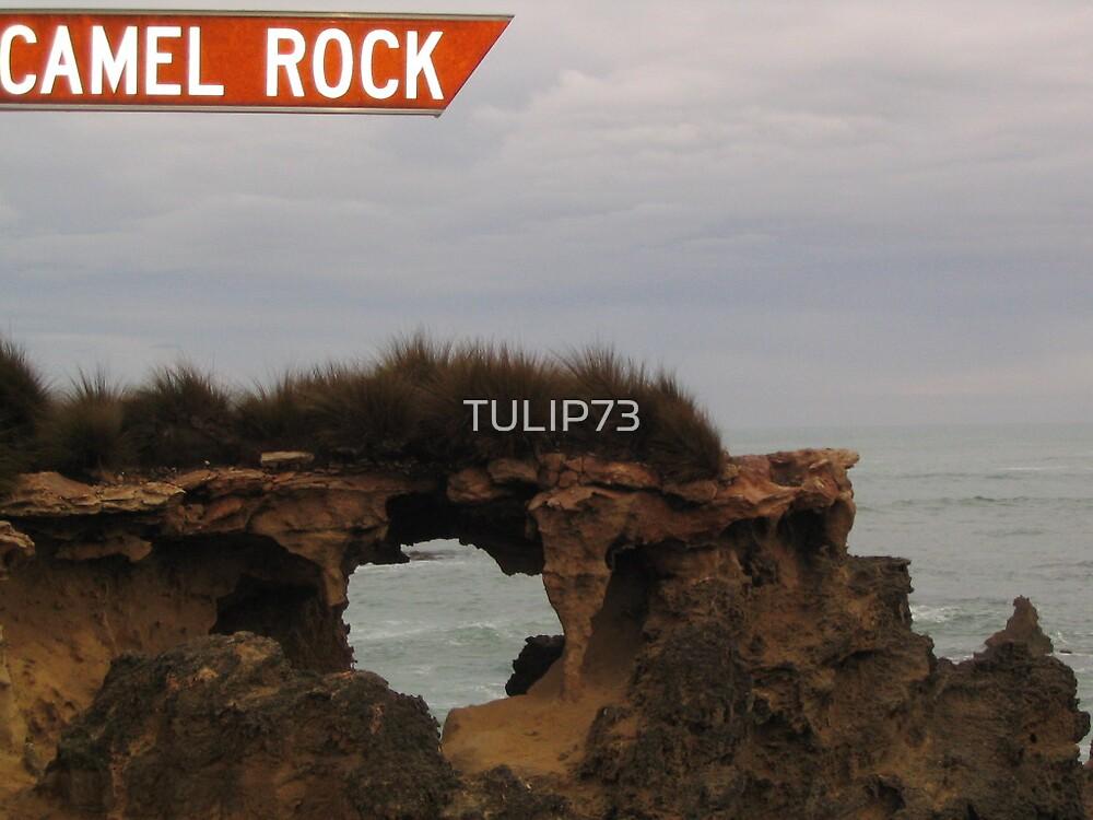 CAMEL ROCK-SOUTH AUSTRALIA by TULIP73