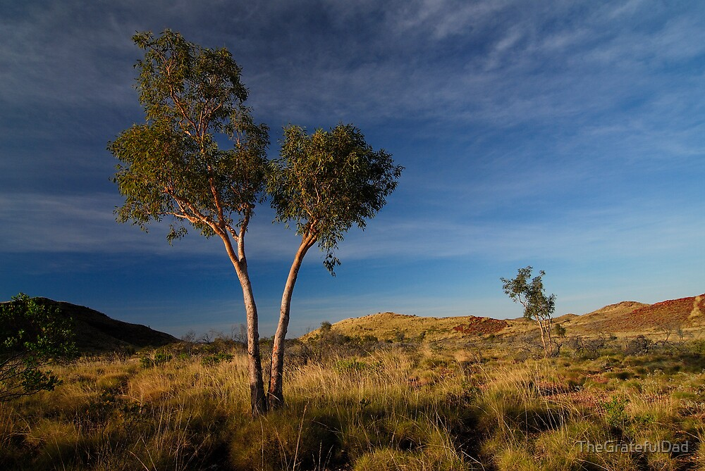 Pilbara Evening by TheGratefulDad