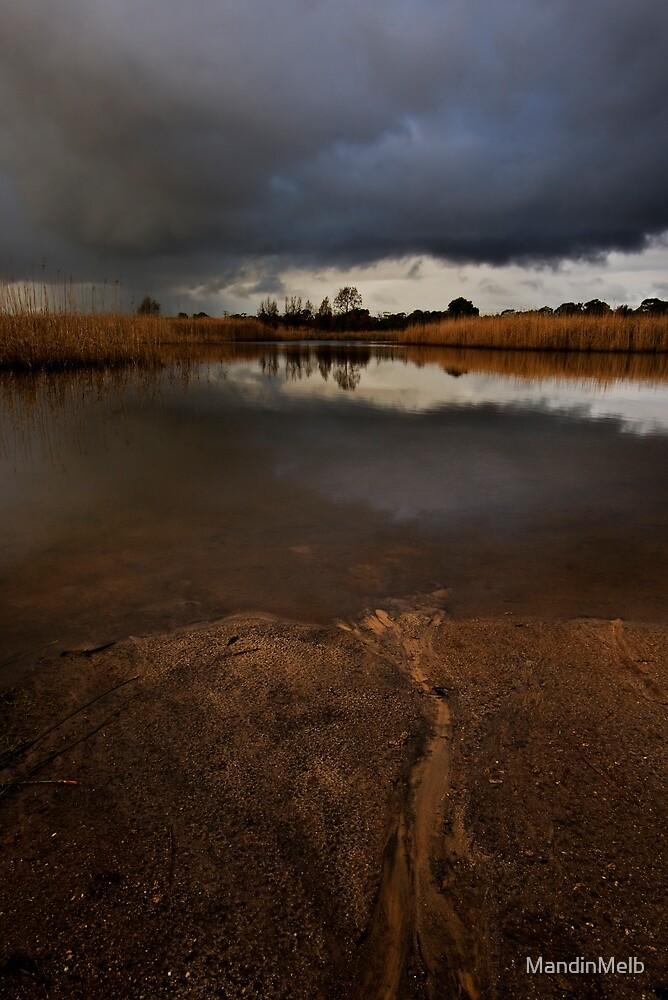 Storm Over Wetlands by MandinMelb
