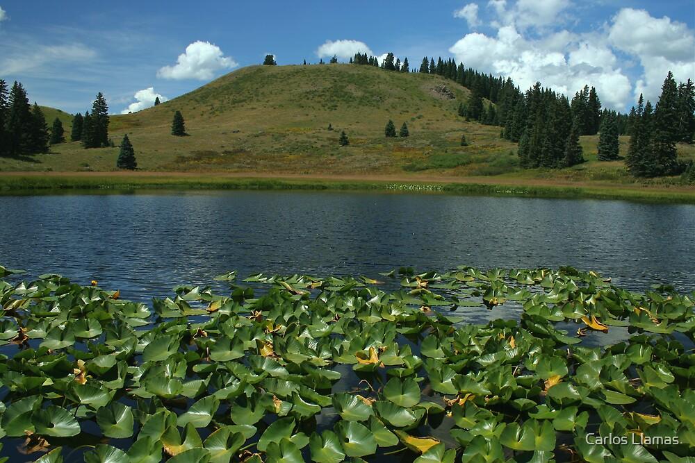 Bottomless Lake by Carlos Llamas