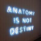 Anatomy Is Not Destiny by wtvrcait