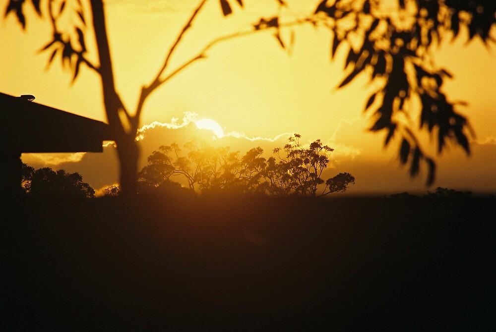 Sunrise by kympearce