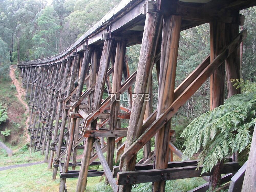 BRIDGE by TULIP73