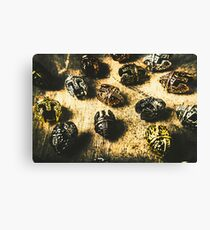 Ancient battlefield armour Canvas Print