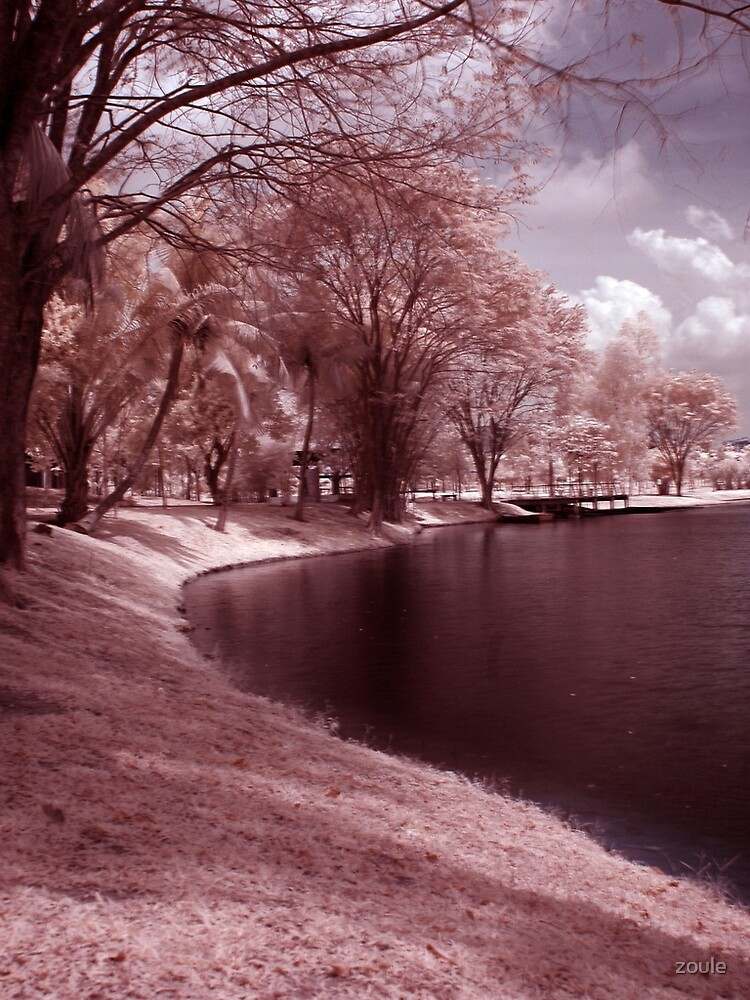 Infrared at Cyberjaya 4 by zoule