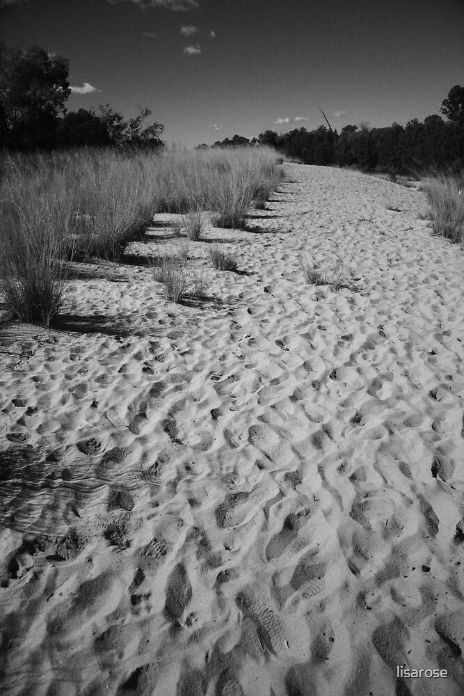 A Billion footprints by lisarose