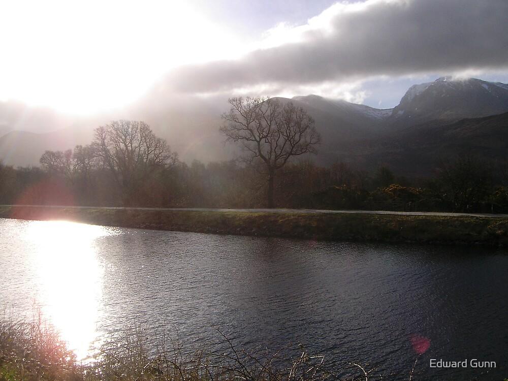 Morning Glory by Edward Gunn