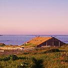 Vikings Settlement-1 by rog99