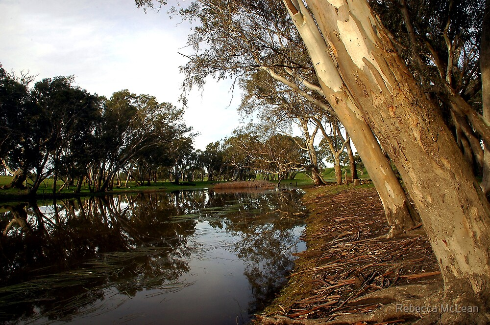 Wannon River by Rebecca McLean