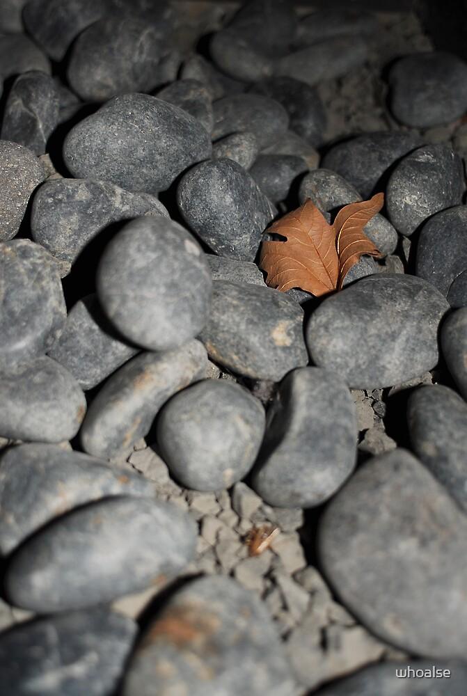 Stony Dry Leaf by whoalse