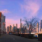 Navy Pier Chicago by daydremr