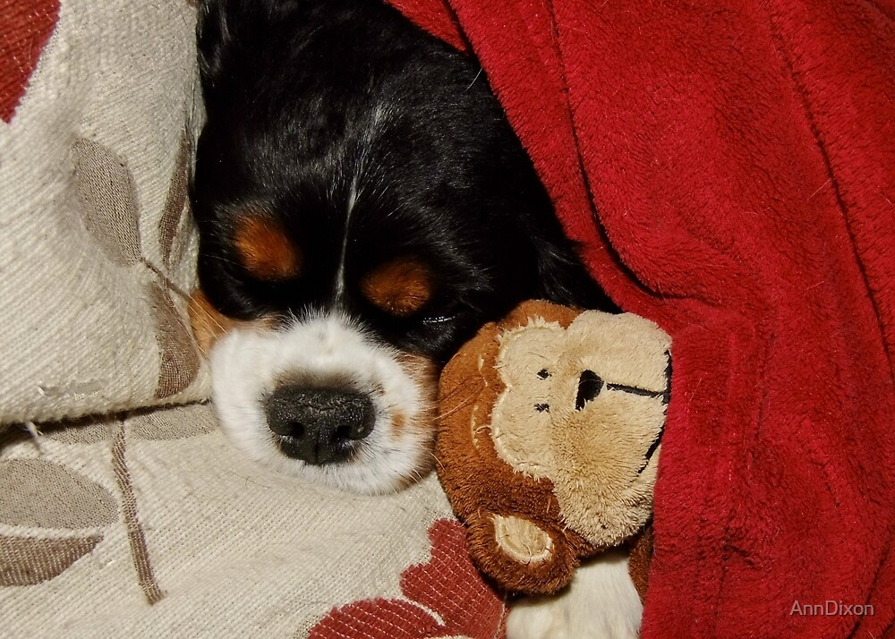 Charlie Asleep with her Monkey by AnnDixon