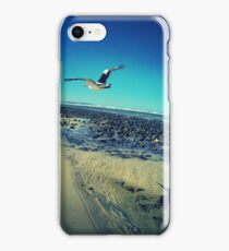 Pelican at Lennox Head iPhone Case/Skin