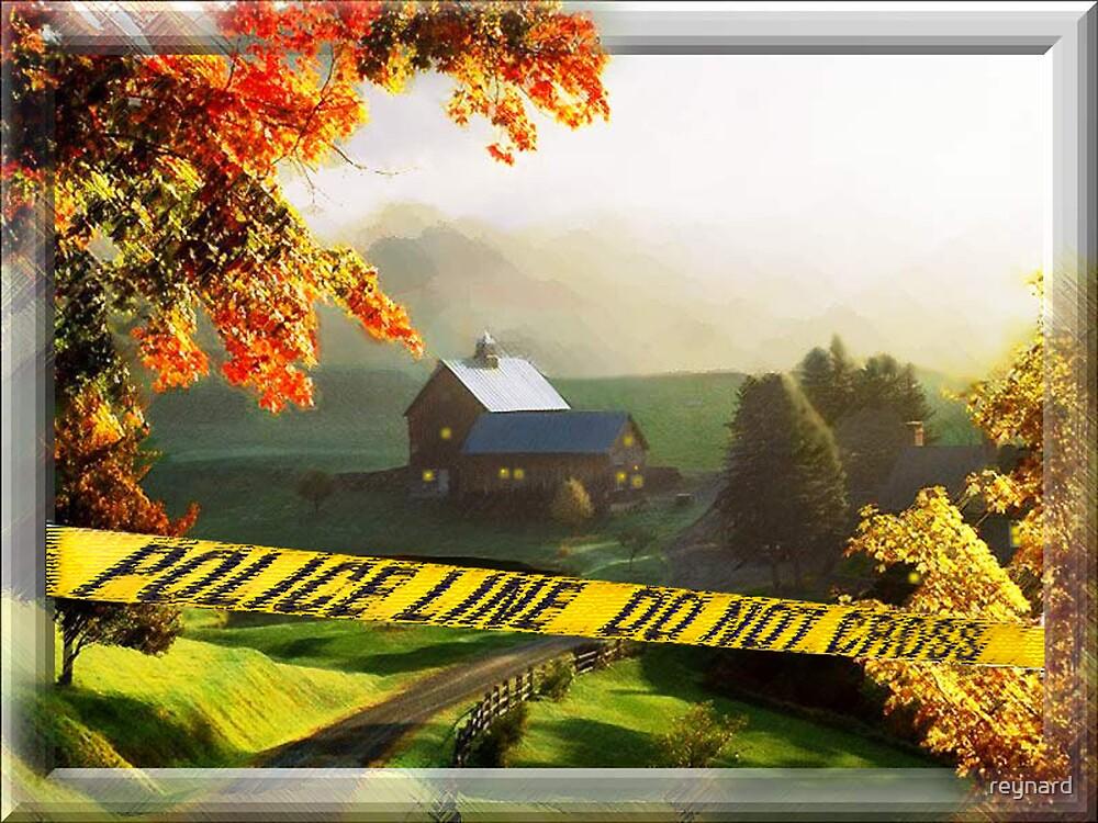 Valley CSI by reynard