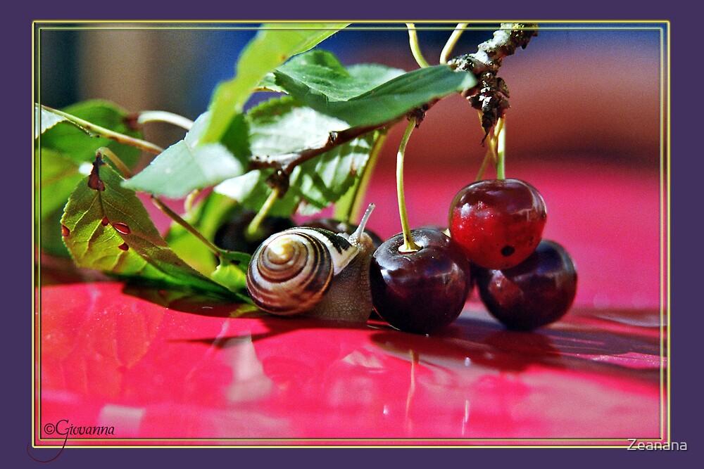 Snail's Cockaigne by Zeanana