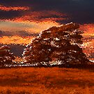 sunset Blubberhouses Moor by spemj
