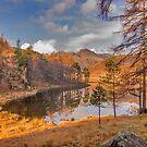 Autumn at Blea Tarn by Trevor Kersley
