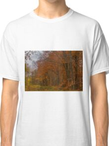 Autumn in the Woods Classic T-Shirt