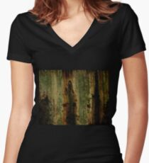 Mouldy Castle Wall Women's Fitted V-Neck T-Shirt