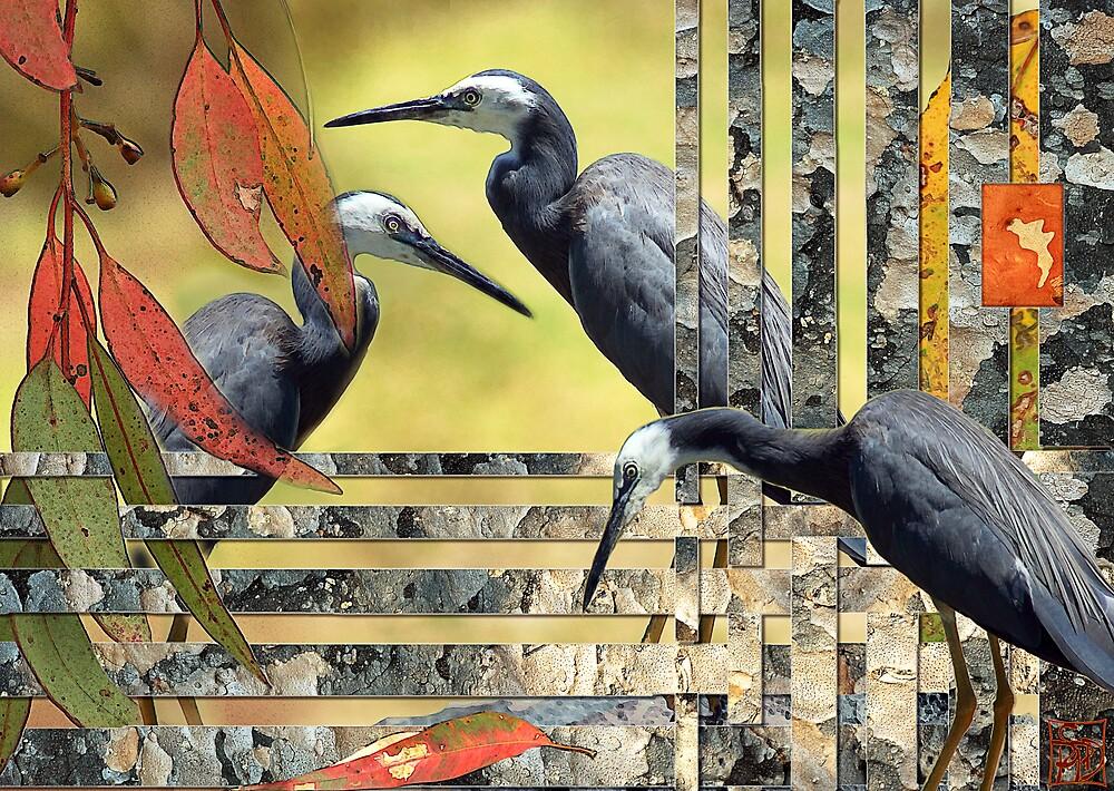 Egrets by Sabine Spiesser