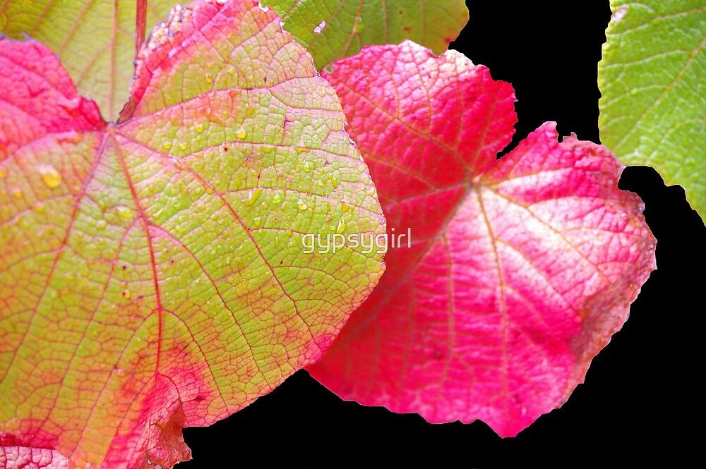 Autumn Leaves II by gypsygirl