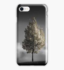 pleasant delirium iPhone Case/Skin